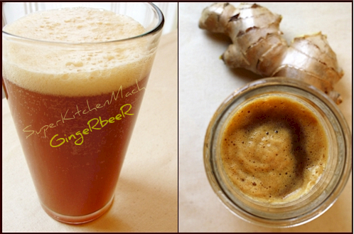 Thermomix recipe for ginger beer