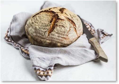 Artisan Bread by Thermomix Baking Blogger